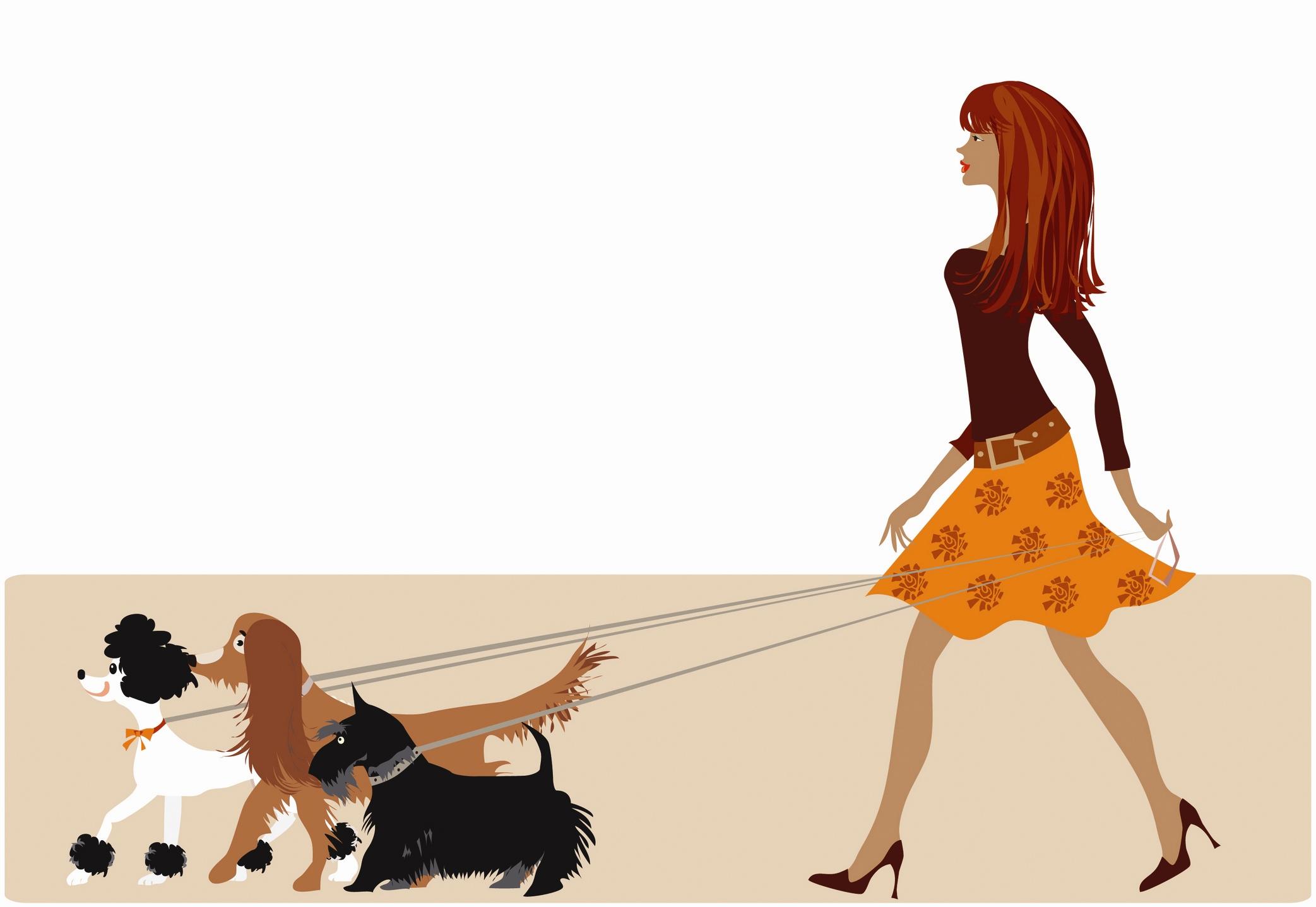 london pet professional amp dog walker   pettrainersnow     pet